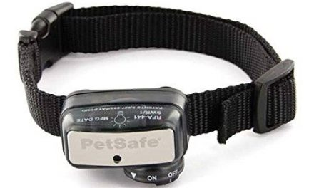 PetSafe Dog Bark Collar Reviews