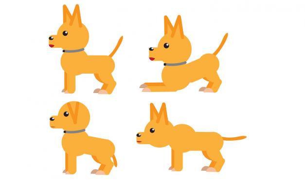 Understanding dog body language