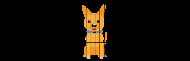 portable dog fence2
