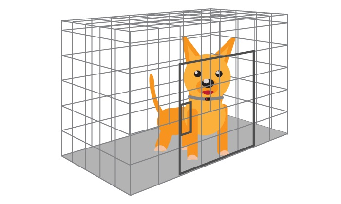 Train Dog Not To Bark In Crate