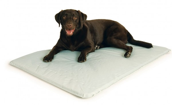 K&H Pet Products Cool Bed III for dogs