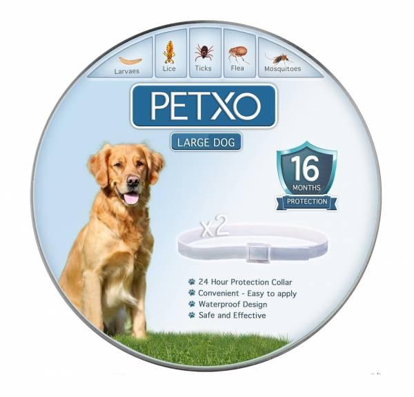 PETXO flea collar for dogs