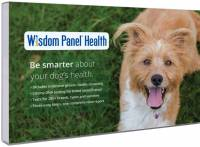 Wisdom Panel Health dna test