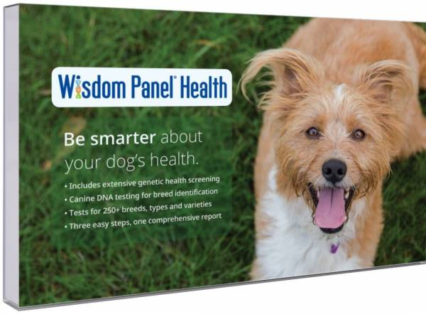 Wisdom Panel Health dog dna test
