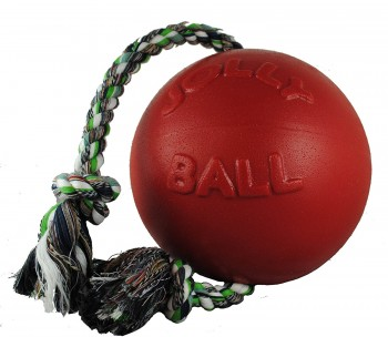 strong dog ball