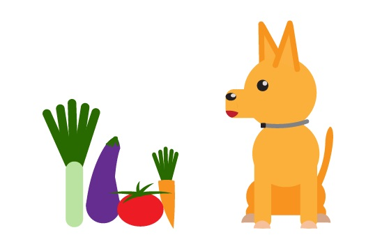Do Dogs Need Vegetables?