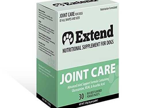 Extend Joint Care For Dogs Review – What To Know