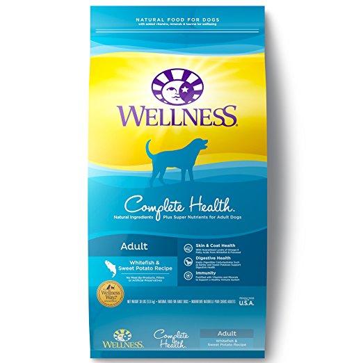 Wellness sensitive stomach dog food
