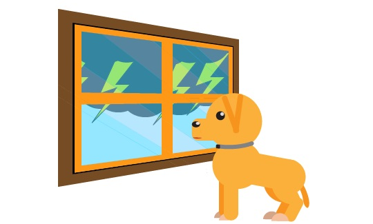 How to Calm Down Your Dog During a Thunderstorm