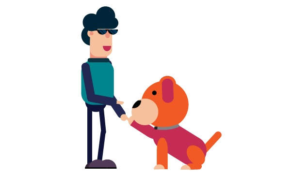 3 Tricks You Can Easily Teach Your Dog