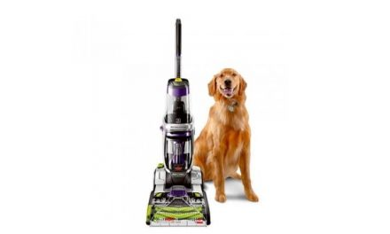 Comprehensive Bissell Pet Vacuum Reviews