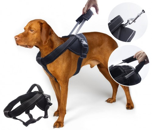 Heavy Duty Dog Harness, Prevent Pulling, Soft Padded