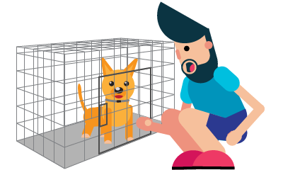 Adopting a Dog: Adopting and Caring for Your New Family Member