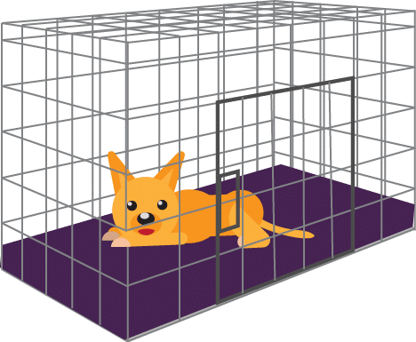 5 Best Chew Proof Crate Pads Buyer S Guide Amp Reviews