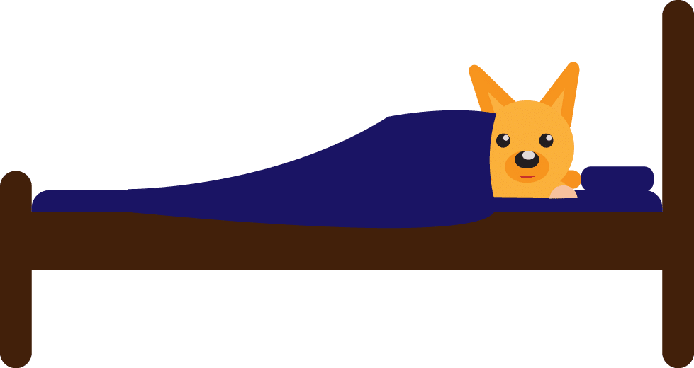 Dogs and Their Love for Sleeping Under the Covers – Explained!