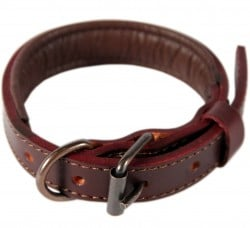 Logical Leather Padded Dog Collar