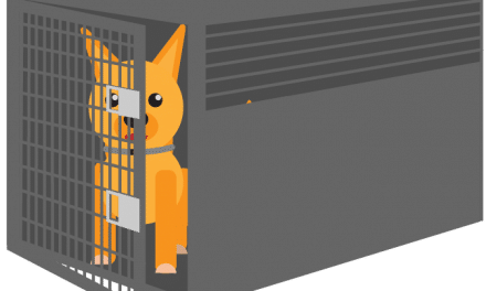 Should You Crate Dogs While at Work?
